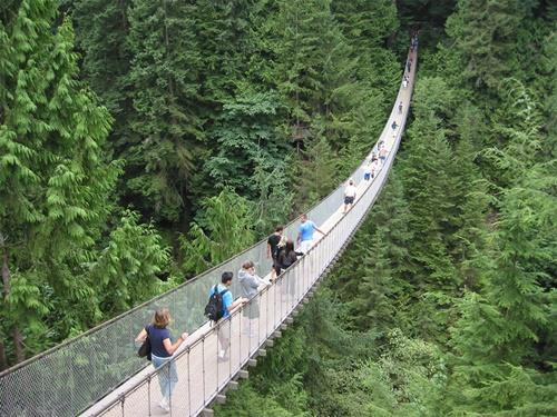 15 cây cầu điên rồ và đáng sợ nhất thế giới (P.1) - ảnh 10