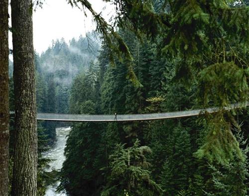 """15 cây cầu """"điên rồ"""" và đáng sợ nhất thế giới (P.1) - 9"""