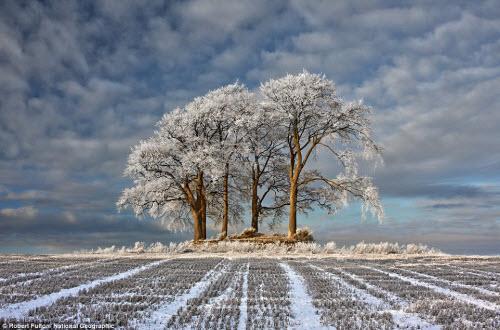 Ngắm ảnh thiên nhiên đẹp ma mị trên national geographic - 5