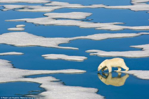 Ngắm ảnh thiên nhiên đẹp ma mị trên national geographic - 11