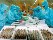 Thị trường - Tiêu dùng - New Zealand tăng nhập khẩu nông sản, thủy hải sản VN