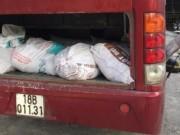 Thị trường - Tiêu dùng - Nghệ An: Bắt xe khách đưa gần 1 tấn nội tạng thối ra miền Bắc