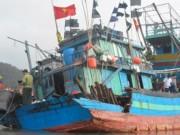 Tin tức trong ngày - Lời kể kinh hoàng của thuyền viên tàu cá bị đâm chìm