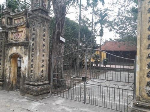 """Đi tìm đại gia gỗ Đồng Kỵ chi chục tỷ mua """"cụ"""" sưa 200 tuổi ở Bắc Ninh - 1"""