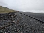 Phi thường - kỳ quặc - Vật thể bí ẩn màu đen dài 100m dạt bờ biển New Zealand