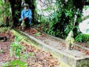 Thế giới - Malaysia: Phát hiện bộ xương người khổng lồ cao 3-5 mét