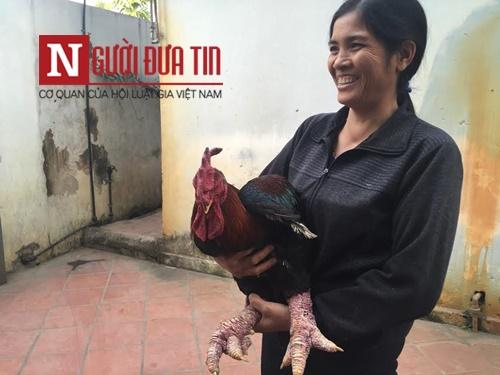 Chơi ngông: Làm lẩu gà Đông Tảo chân 'khủng' nếu bán không được giá - 2