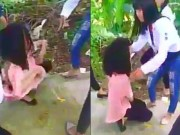 An ninh Xã hội - Công an điều tra clip nữ sinh bị xé áo, đánh hội đồng