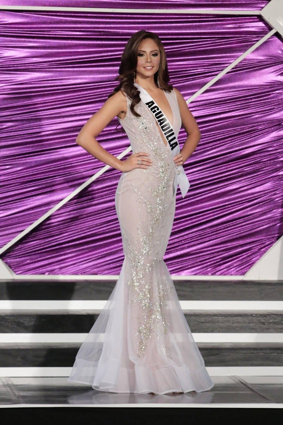 Puerto Rico cử mỹ nữ 9X nóng bỏng đi thi Miss Universe - 7