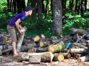 Thị trường - Tiêu dùng - Doanh nghiệp Trung Quốc ồ ạt mua gỗ cao su
