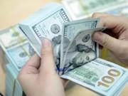 Tài chính - Bất động sản - Tỷ giá và lãi suất cùng hạ nhiệt