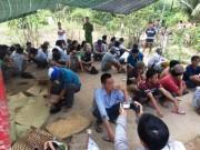 An ninh Xã hội - Công an nổ súng hốt gọn trường gà ở Tiền Giang