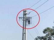 Tin tức trong ngày - Người đàn ông bị điện giật cháy khô trên cột điện cao thế