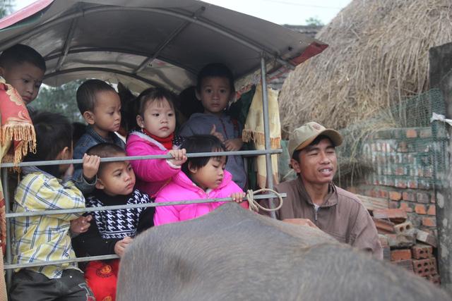 Cảm động người cha tàn tật dùng xe trâu chở con gái tới trường - 6