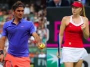 """Thể thao - 2017, """"mùa vàng"""" của Federer và Sharapova?"""