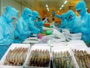 """Thị trường - Tiêu dùng - Tôm Việt xuất khẩu EU dính """"nghi án"""" gian lận xuất xứ"""