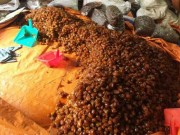 Thị trường - Tiêu dùng - Phát hiện nhiều tấn mứt bẩn ở Sài Gòn chuẩn bị bán ra thị trường