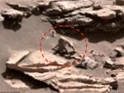 Phi thường - kỳ quặc - Phát hiện khỉ nhện trên sao Hỏa?