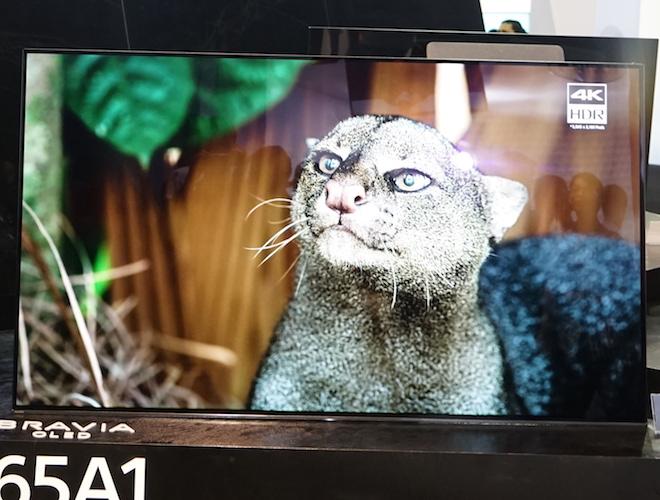 """Sony Show 2017 quy tụ loạt công nghệ """"đỉnh"""" của Sony tại IFA - 3"""