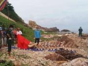 Cận cảnh bộ xương  khủng  của cá ông hơn 10 tấn lạc trôi ở Kiên Giang