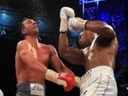 """Nóng mắt Vua quyền Anh, nhà Klitschko  """" gọi hội """"  đòi rửa hận"""