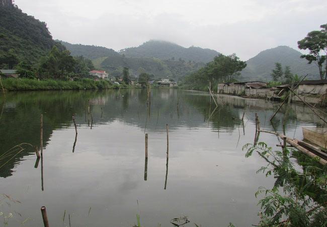 Làm giàu ở nông thôn: Tỷ phú nuôi cá, vịt đi lên từ tay trắng và nợ nần - 4