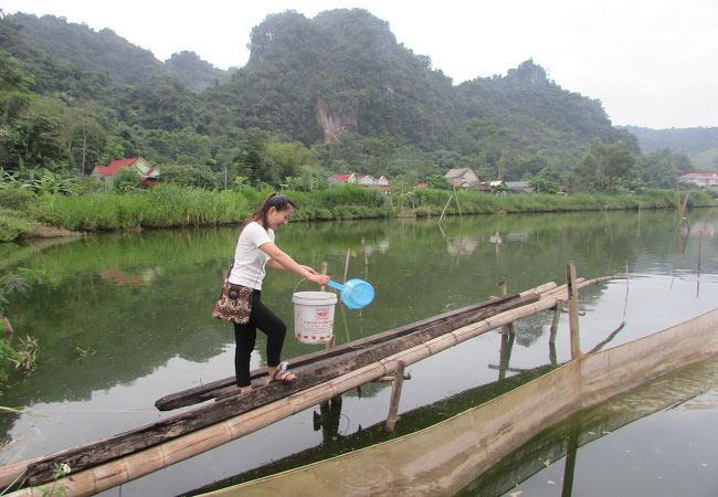 Làm giàu ở nông thôn: Tỷ phú nuôi cá, vịt đi lên từ tay trắng và nợ nần - 6