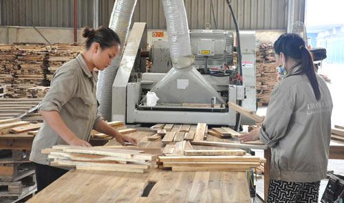 Rộng đường xuất khẩu, ngành gỗ chắc chắn cán mốc 8 tỷ USD - 1