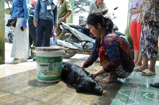 TP.HCM: Rò rỉ khí độc, 4 người nhập viện, vật nuôi chết la liệt - 4