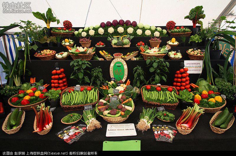 Ai cũng muốn đi tới chợ rau củ này vì nó đẹp như tranh nghệ thuật - 10
