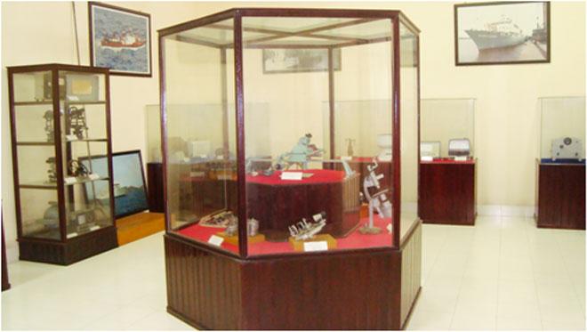 Viện Hải dương học Nha Trang – Kho tàng sinh vật biển lớn nhất Việt Nam - 6