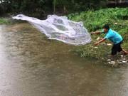 Clip: Người Sài Gòn buông chài, thả lưới bắt cá trên đường sau mưa lớn