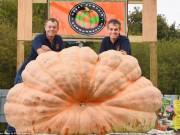 Hai anh em song sinh trồng được trái bí ngô nặng hơn 1 tấn