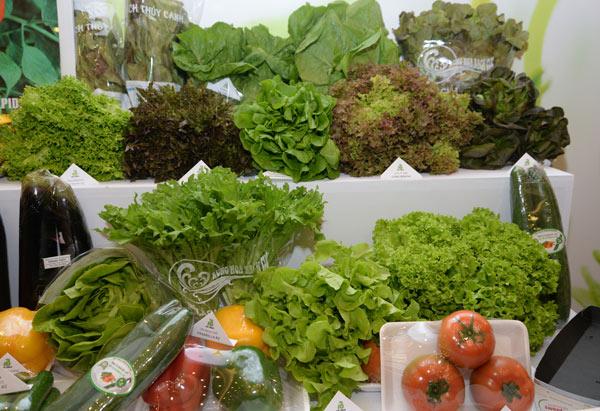 Mưa lũ kéo dài, giá rau xanh tại Hà Nội tăng mạnh