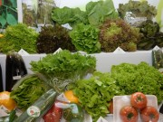 Sau mưa lũ, giá rau xanh Hà Nội tăng mạnh