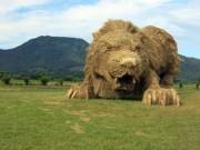 """Choáng với cánh đồng toàn  """" quái vật """"  khổng lồ"""
