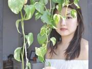 Lợi ích của cây cảnh với sức khỏe con người