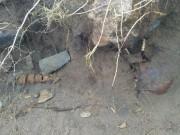 Bão  hủy diệt  để lộ bộ xương nghìn tuổi trên bờ biển Ireland