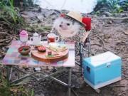 """Chàng  """" Nhím """"  Nhật Bản nổi tiếng như minh tinh trên Instagram"""