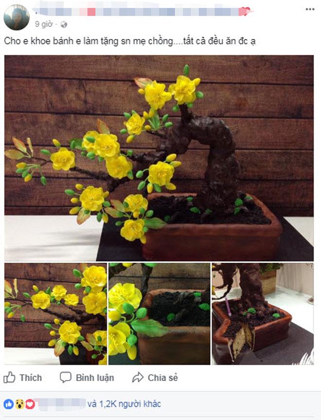 """Bạn sẽ """"sốc"""" khi biết cây mai bonsai này thực sự là gì - 3"""