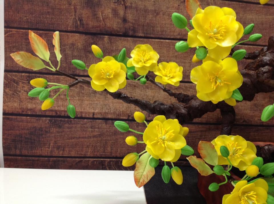 """Bạn sẽ """"sốc"""" khi biết cây mai bonsai này thực sự là gì - 2"""