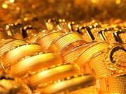 Giá vàng hôm nay (23/10): Giảm sâu