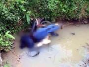 Phát hiện người đàn ông chết bất thường dưới cống nước