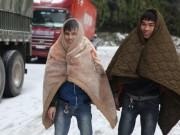 Tin tức trong ngày - Mùa đông 2017 đến muộn, có thể lạnh kỷ lục