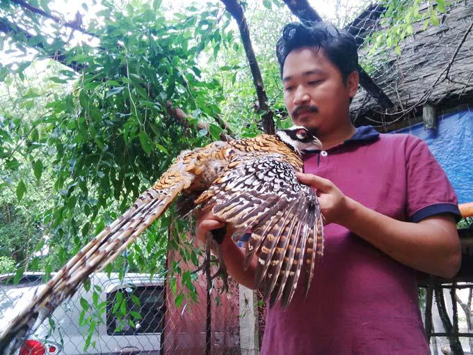 Làm trang trại giáo dục ở Hà Nội: Gà lợn ăn xả láng lại có bộn tiền - 1