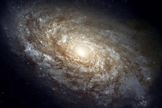 Thiên tài vật lý công bố tài liệu lịch sử về vũ trụ, gây sập web - 1
