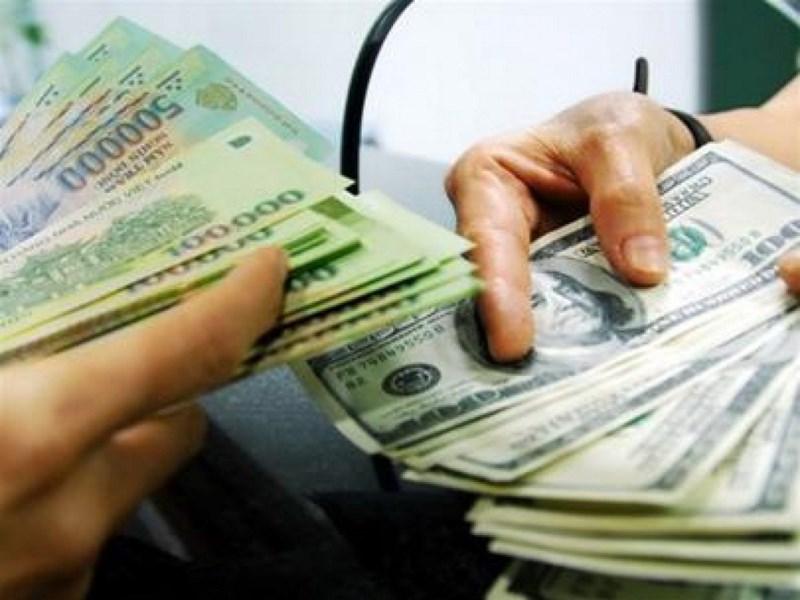 Dự trữ ngoại hối kỷ lục 45 tỉ USD, tỉ giá sẽ ra sao? - 1