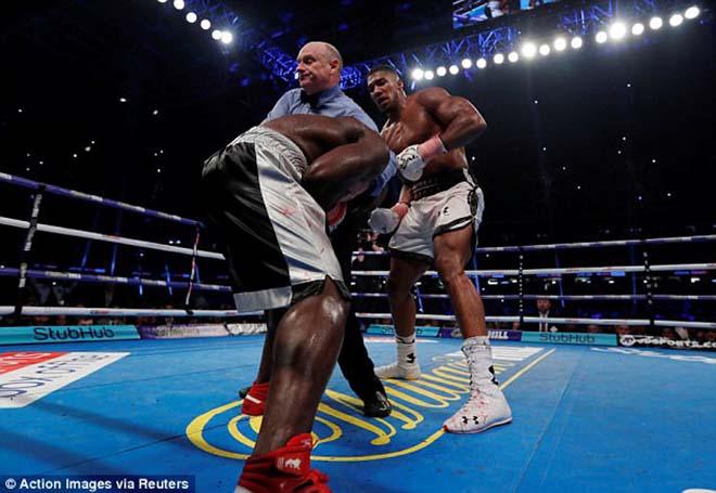 Boxing tuyệt đỉnh, Anthony Joshua - Carlos Takam: Cú đấm sấm sét & 10 hiệp kịch chiến 2