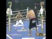 """Thể thao - """"Quái vật"""" 2m - 250kg bá chủ sumo, bị 4 cao thủ """"xử đẹp"""": Trò hề MMA"""