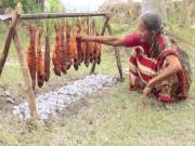 Cụ bà 106 tuổi mang cả rổ cá ra gốc dừa nướng hút 32 triệu view